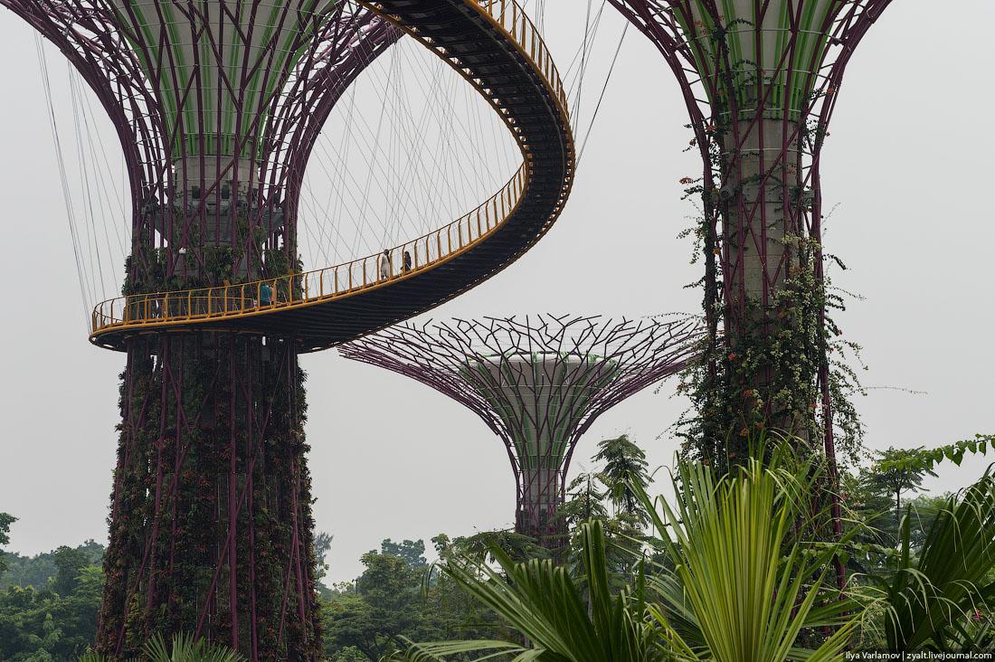 сингапур шлюхи