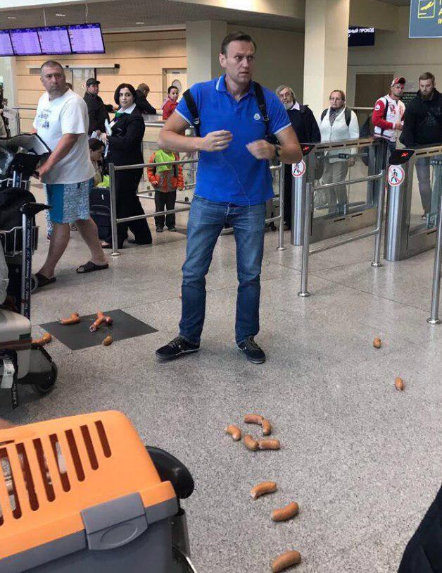 """Навального """"забросали"""" сардельками в аэропорту Домодедово"""