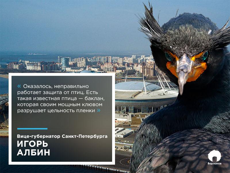 Вице-губернатор Петербурга признался, что соврал про бакланов, испортивших «Зенит-Арену»