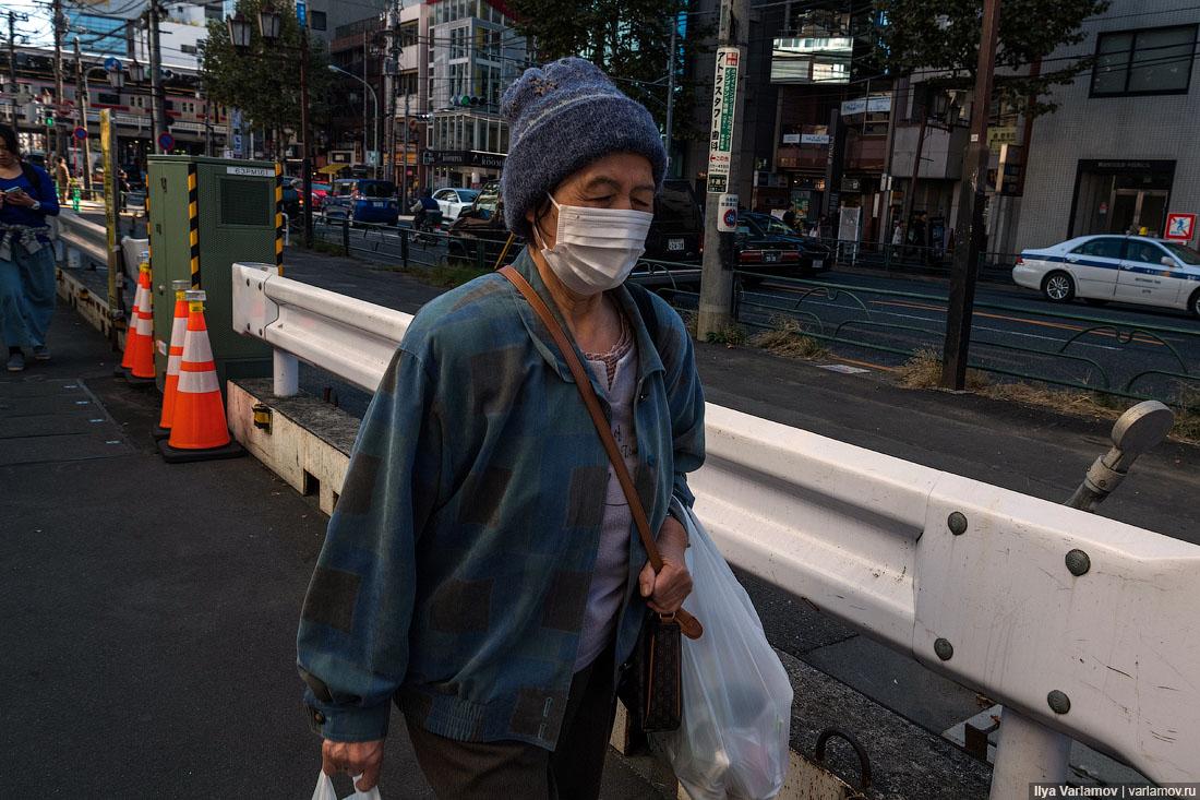Токио: традиции, мусор, автопонты и афганский ковёр