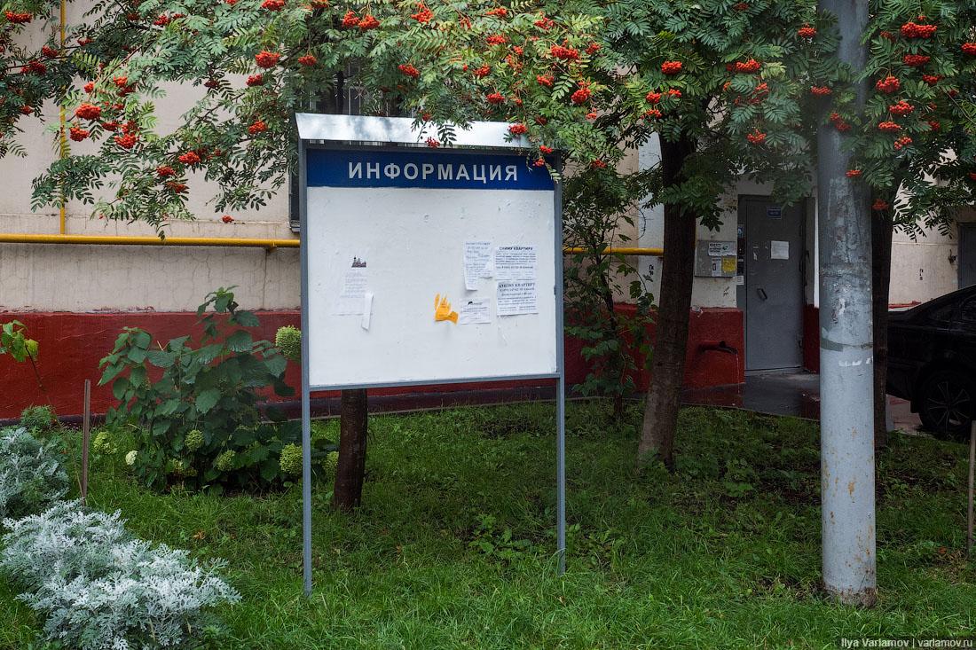 Как проходят выборы в Москве и регионах. Трансляция окончена