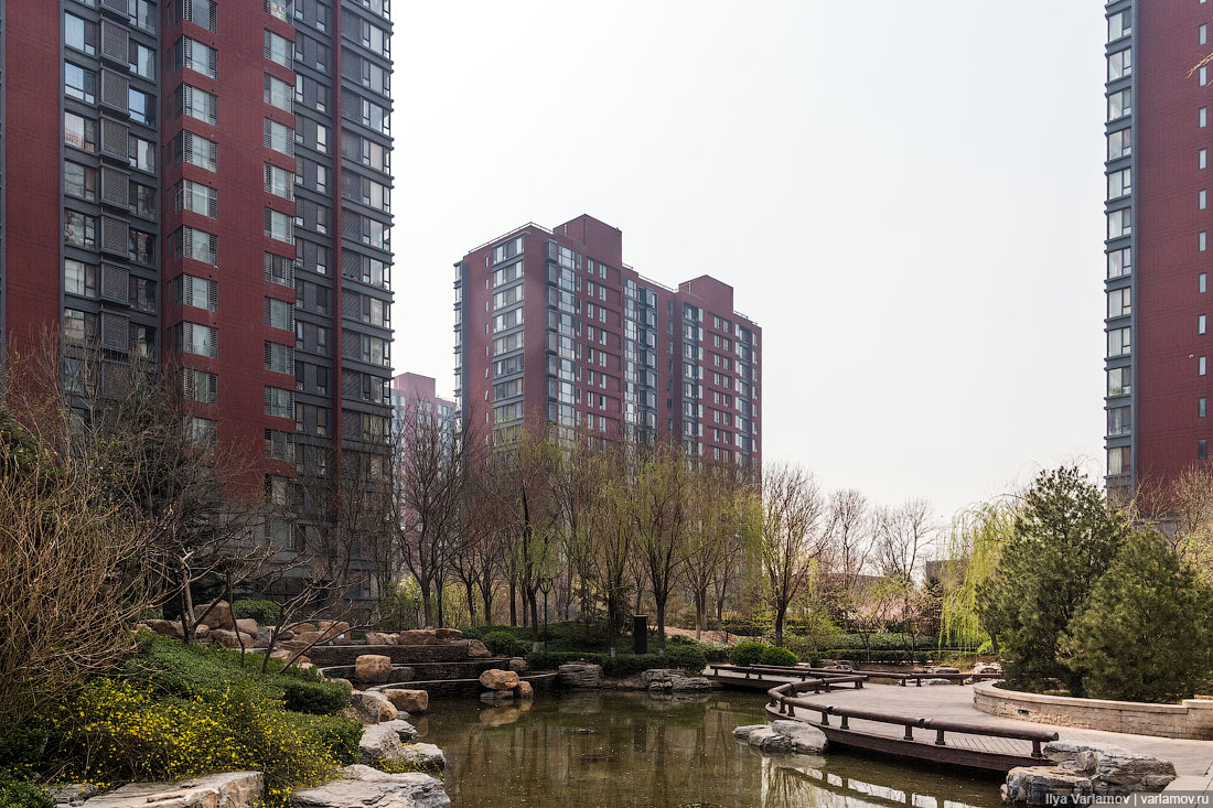 Новые районы Китая: хотели бы так жить? районы, Новые, юаней, жильё, жилья, Китае, Пекине, живут, деревья, только, около, посмотрим, строительство, самое, недвижимости, новостройках, район, стоит, Новый, машин