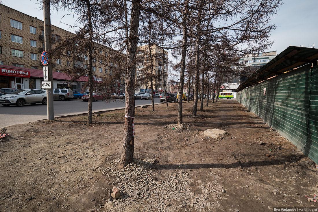 Откуда в наших городах берётся пыль? грунт, открытый, газон, грязи, Красноярске, вырастет, только, способом, самом, города, просто, весну, набережная, машин, городах, наших, ходят, земле, тротуаров, Вместо