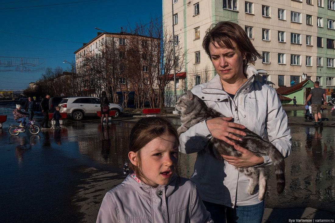 Россия – Норвегия: чо там за окном?