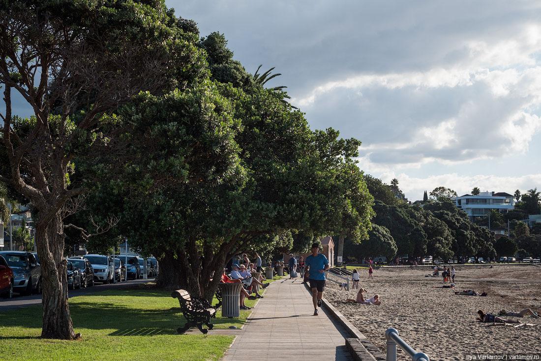 Новая Зеландия: а может, все бросить и остаться тут?