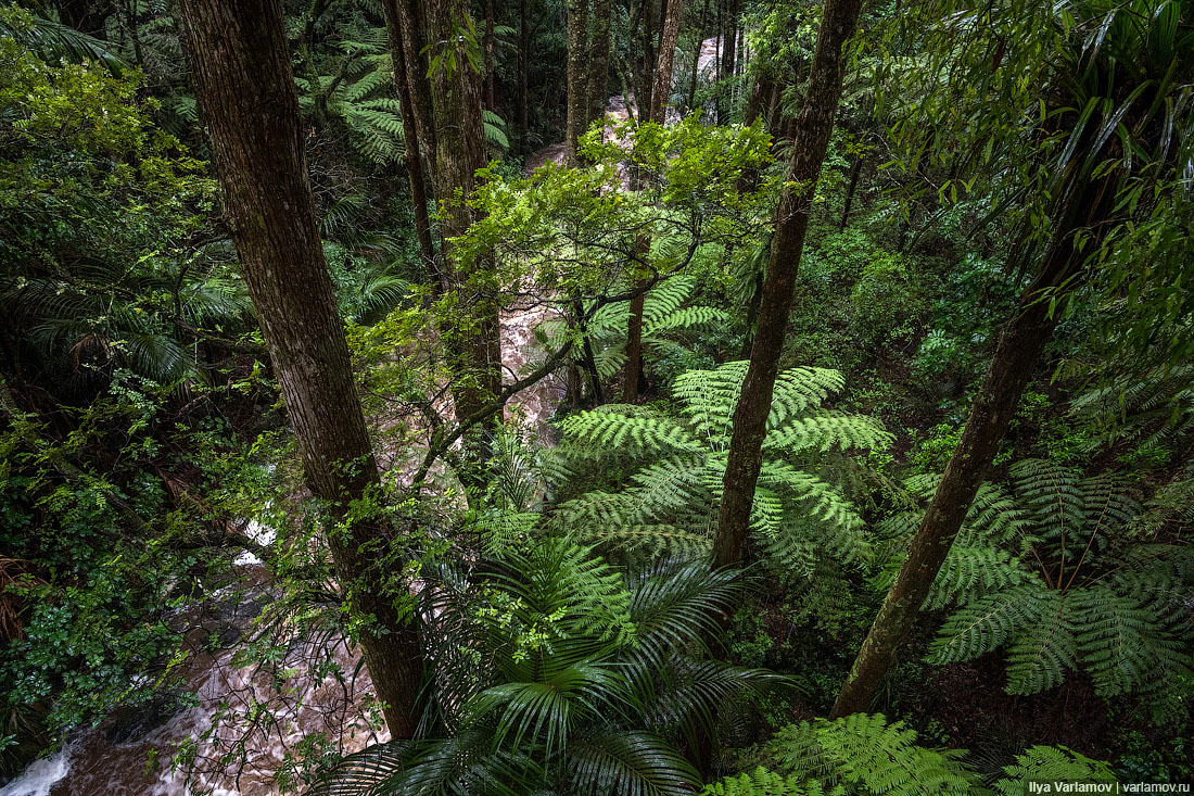 Новая Зеландия: учитесь, как надо обращаться с природой!