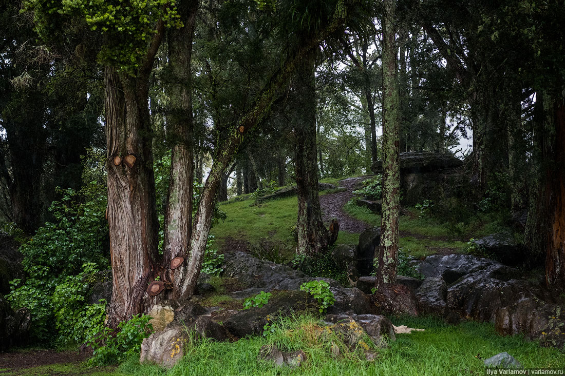 Новая Зеландия: учитесь, как надо обращаться с природой! Зеландии, можно, Новой, поэтому, чтобы, обязательно, очень, будет, пещеры, ничего, которые, Здесь, природу, человека, может, достопримечательности, вмешательство, просто, пещера, около