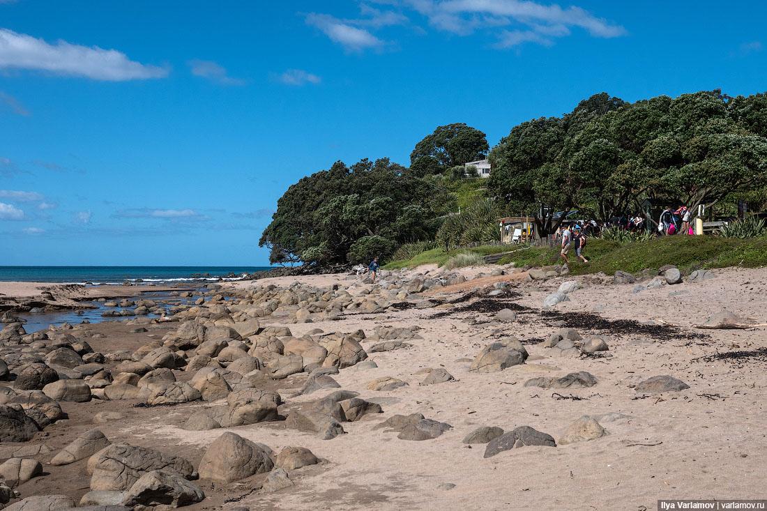 Красоты Новой Зеландии Зеландии, Новой, здесь, можно, бухты, туристов, Новая, пляжа, Зеландия, очень, около, Посты, метров, везде, Кафедральной, может, нужно, Новую, которых, Здесь