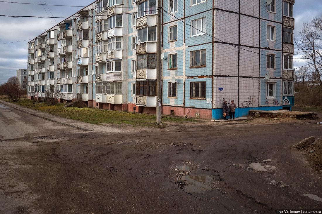 Россия-2017: зайцы, взятки и мошенники – это норма