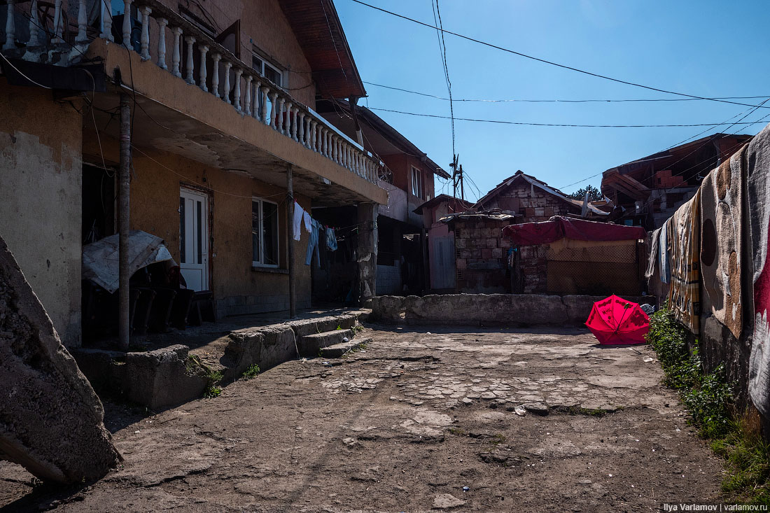 Курица не птица, Болгария – не заграница