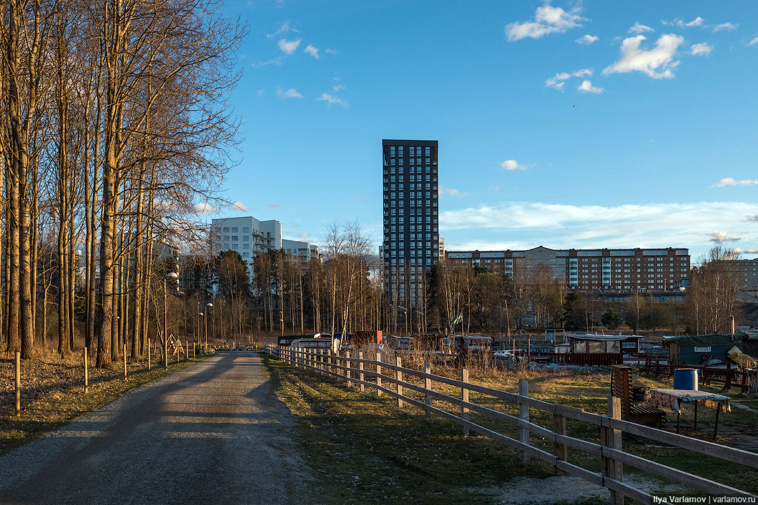 Швеция: тебя сначала изнасилуют, а потом убьют