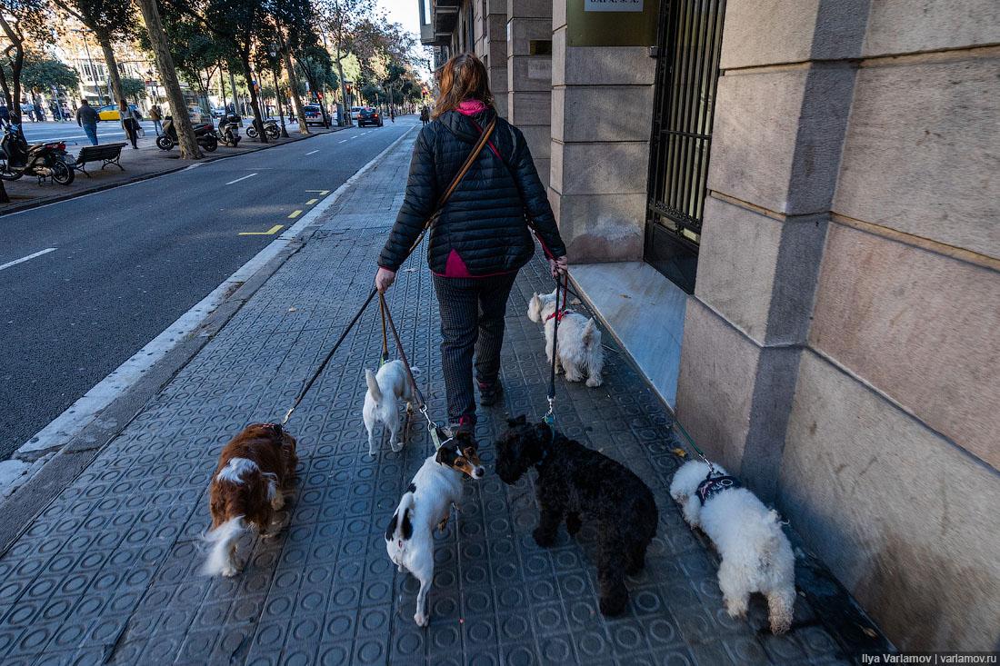 Чудовищная Барселона: диктатура пешеходов и велосипедистов