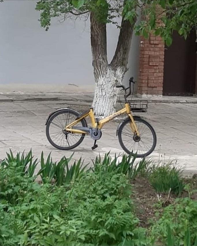 Дремучее быдло в Городе-герое просто, Волгограде, велосипед, байкшеринг, волгоградцы, сначала, случай, Волгоград, только, компании, велосипедов, Волгограда, города, деревья, зачем, велосипеды, невозможно, через, сделали, городе