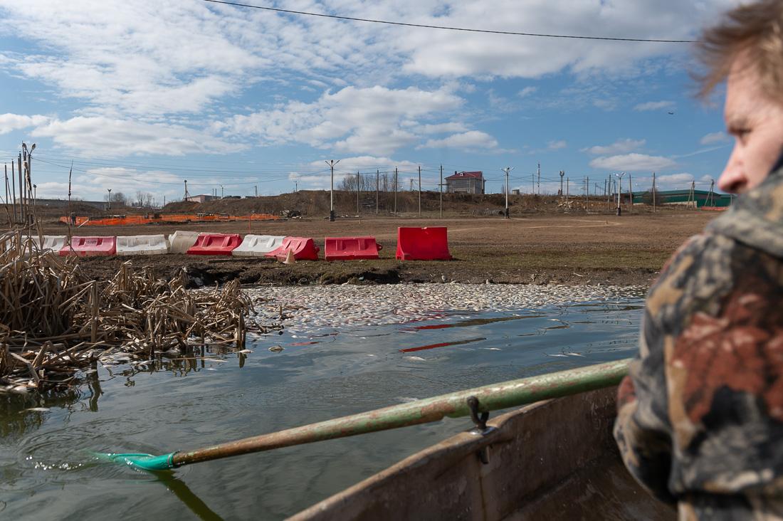 Чиновники пообещали разобраться с загрязнением Рузинского пруда