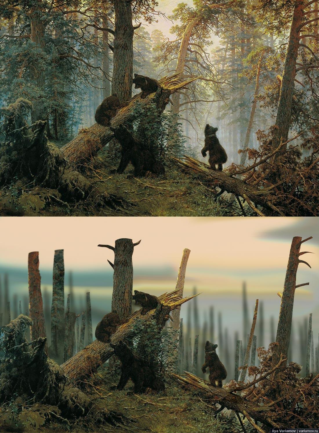 Русский лес глазами наших чиновников деревья, кронирование, Шишкин, дерево, вообще, обрезке, России, Пейзаж, спиливают, которые, штамба, скелетных, Михаил, ветвей, чиновники, более, менее, красивым, просто, городах
