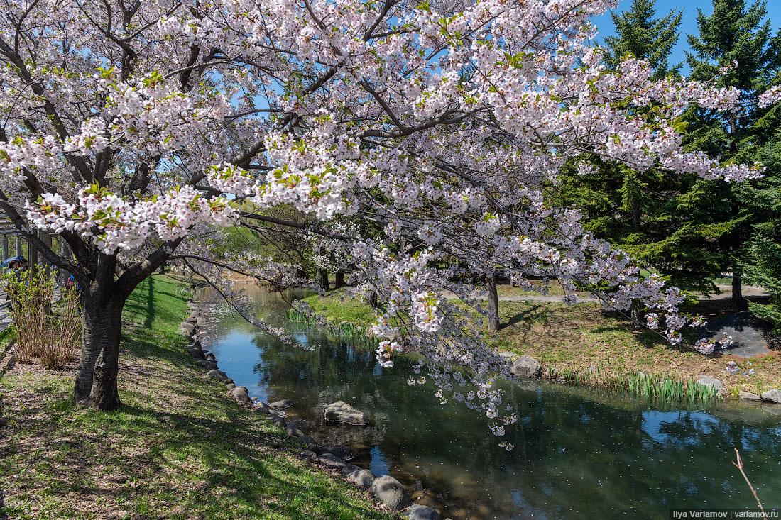 Саппоро: лучшие кладбища в мире