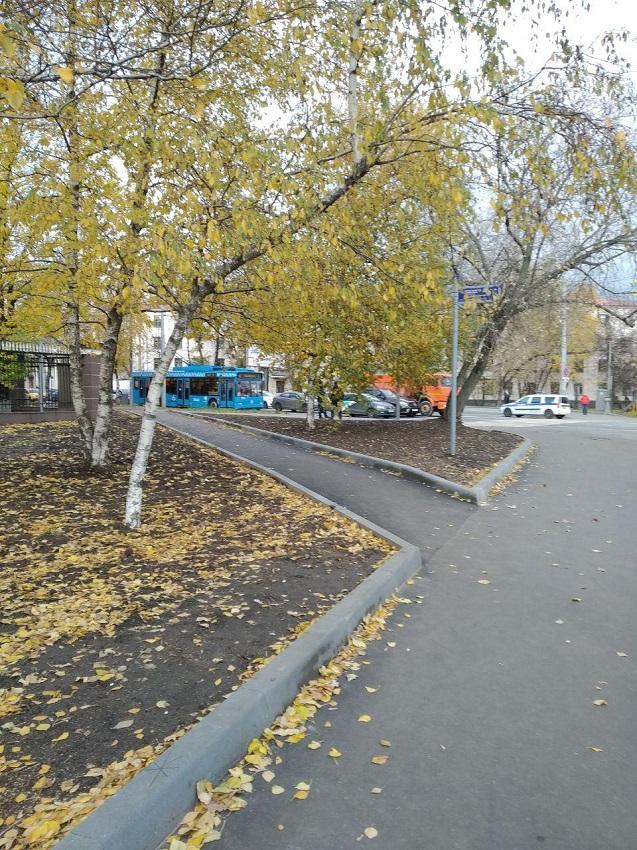 Чем Москва круче Минска тропинку, цветы, пешеходные, можно, коммунальщики, тропинки, время, решение, проблемы, заасфальтировать, Коммунальщики, через, ктото, замостить, простейшее, взять, конечно, намного, плиткой, Пешеходам