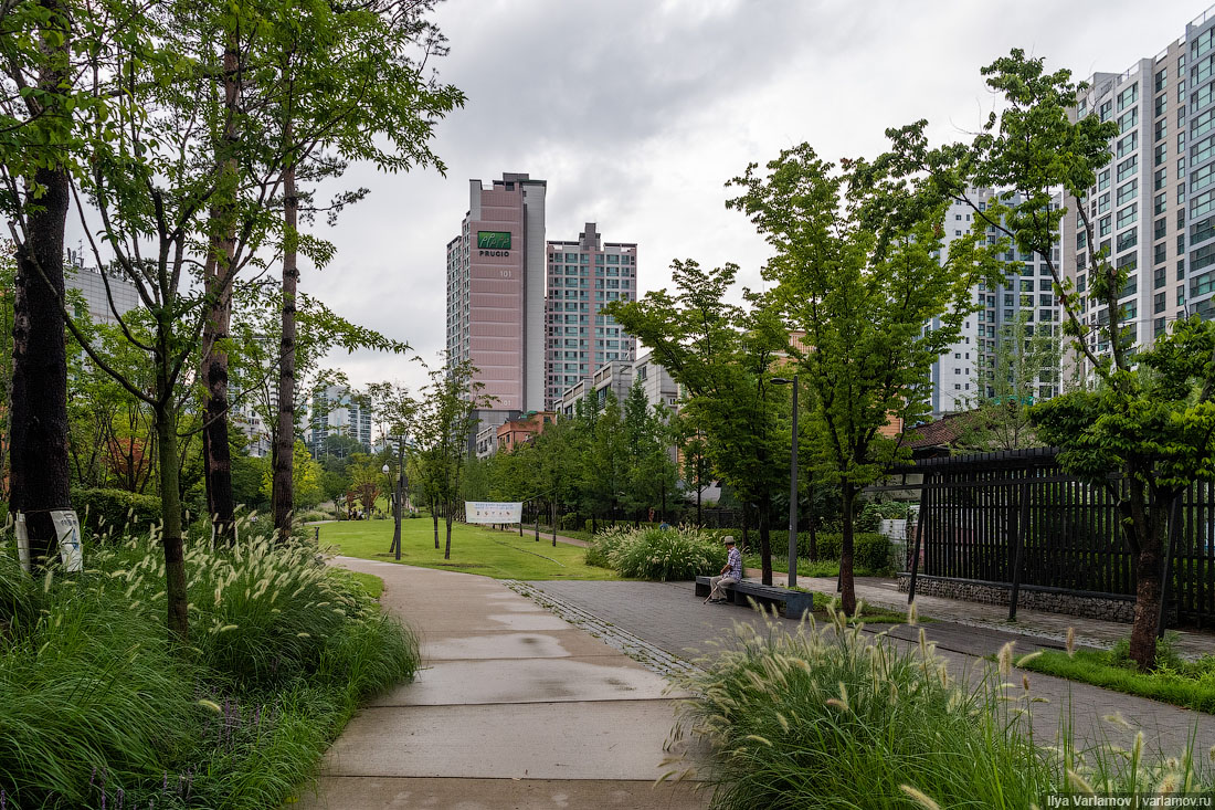 Сеул: парк на месте железной дороги парка, центре, города, можно, между, здесь, дорогой, железной, сеульском, дорожек, вокзал, город, несколько, через, добираться, удобно, будет, чтобы, оказывается, контур
