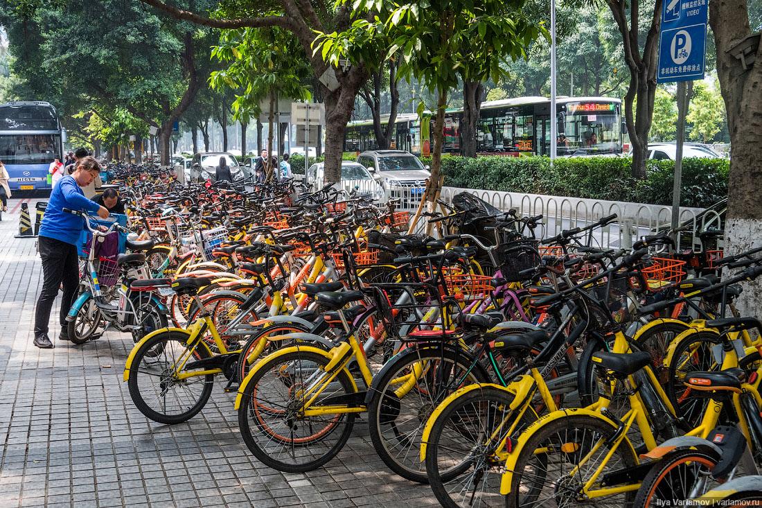 Велосипед – всему беда