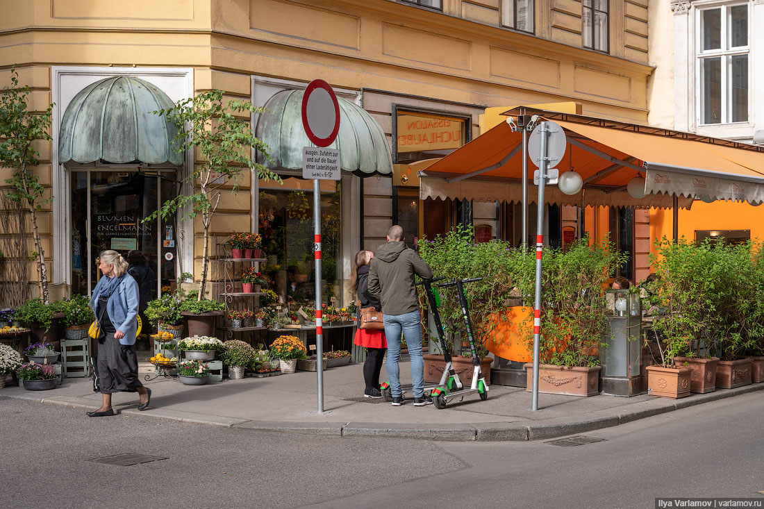 Вена: зелень, вывески, мусоросжигательный завод деревьев, просто, чтото, объект, улицы, венских, ломятся, визуальным, мусором, уродованием, фасадов, вывесками, бесчисленными, дорожными, знаками, Туристы, бутики, выбрасывается, местные, лежат