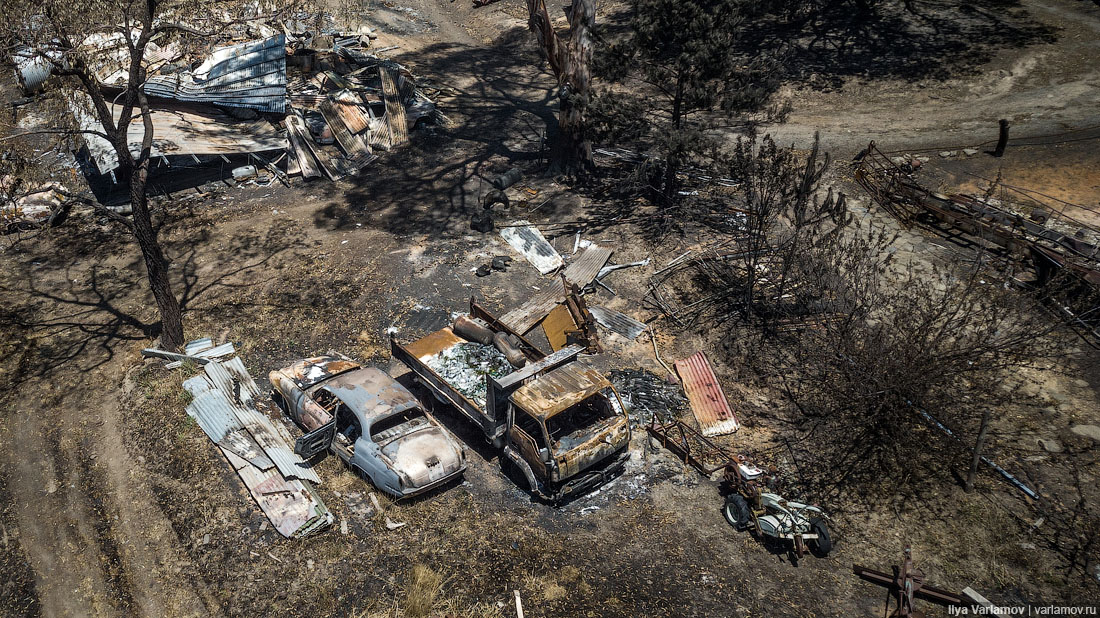 Выжженная земля и трупы животных - фото 19