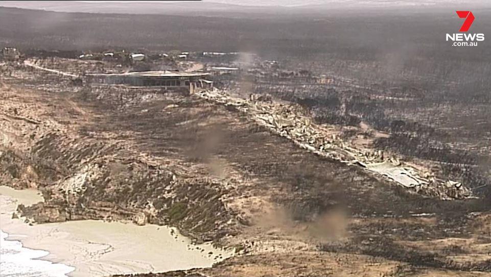 Выжженная земля и трупы животных - фото 55