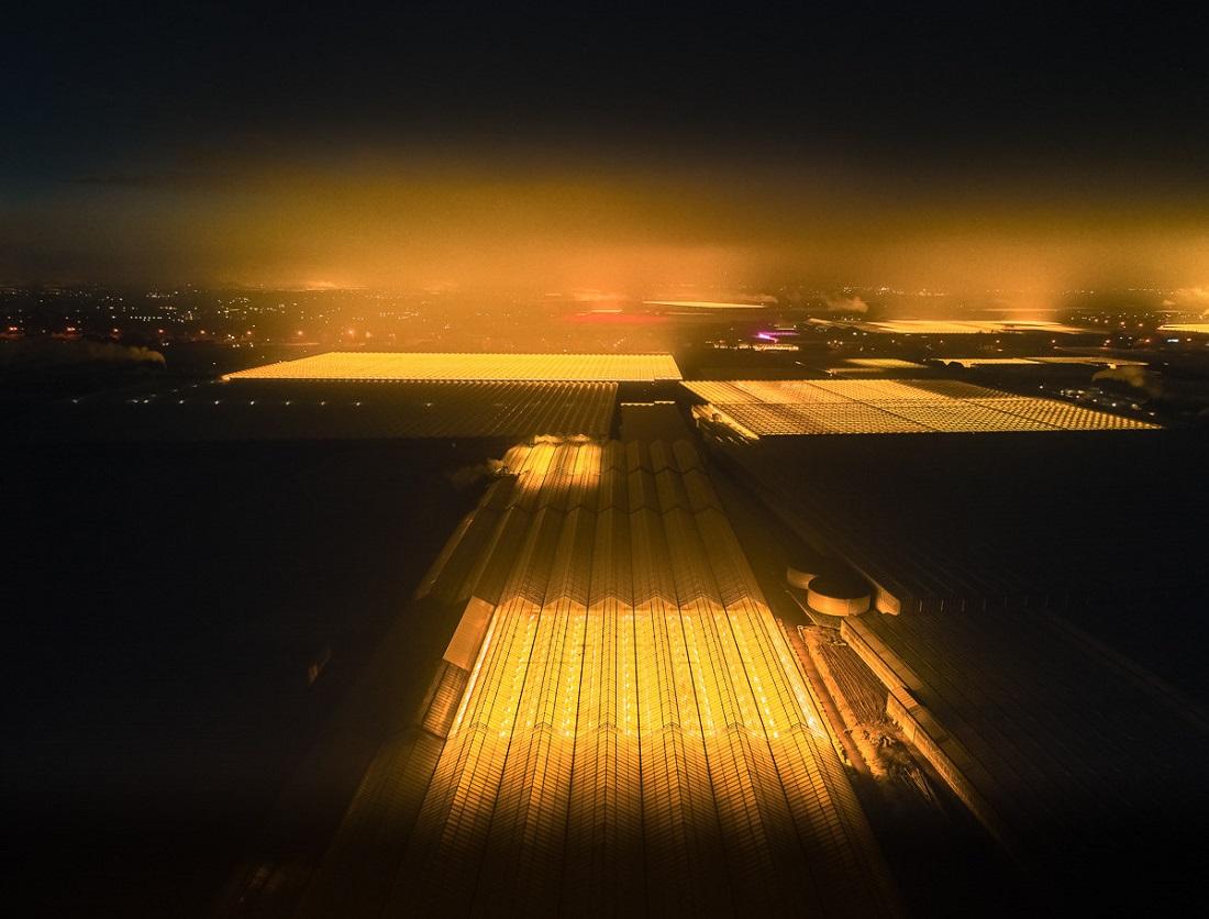 Архитектура и сельское хозяйство: потрясающие фотографии голландских ферм