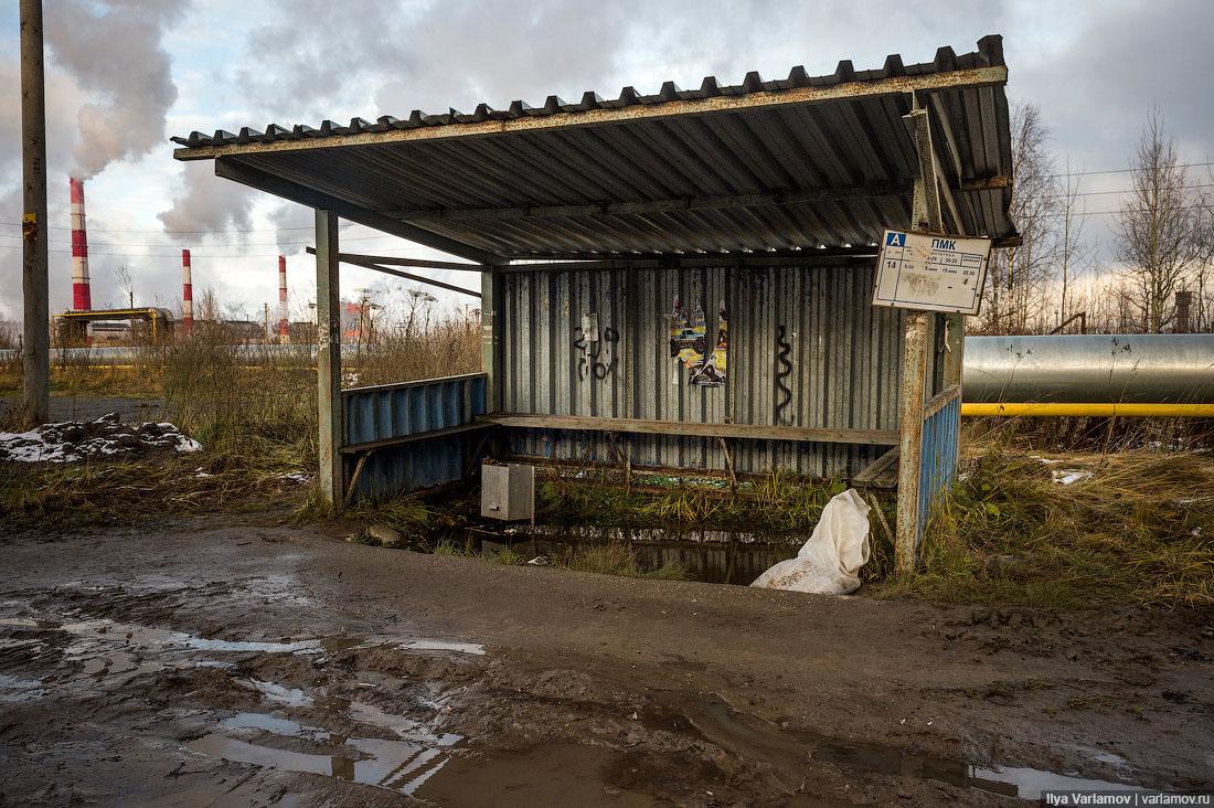 Учитесь у эстонцев, как нужно строить остановки в деревнях