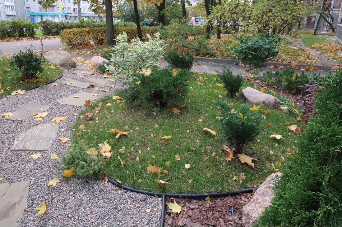 Как может выглядеть ваш двор