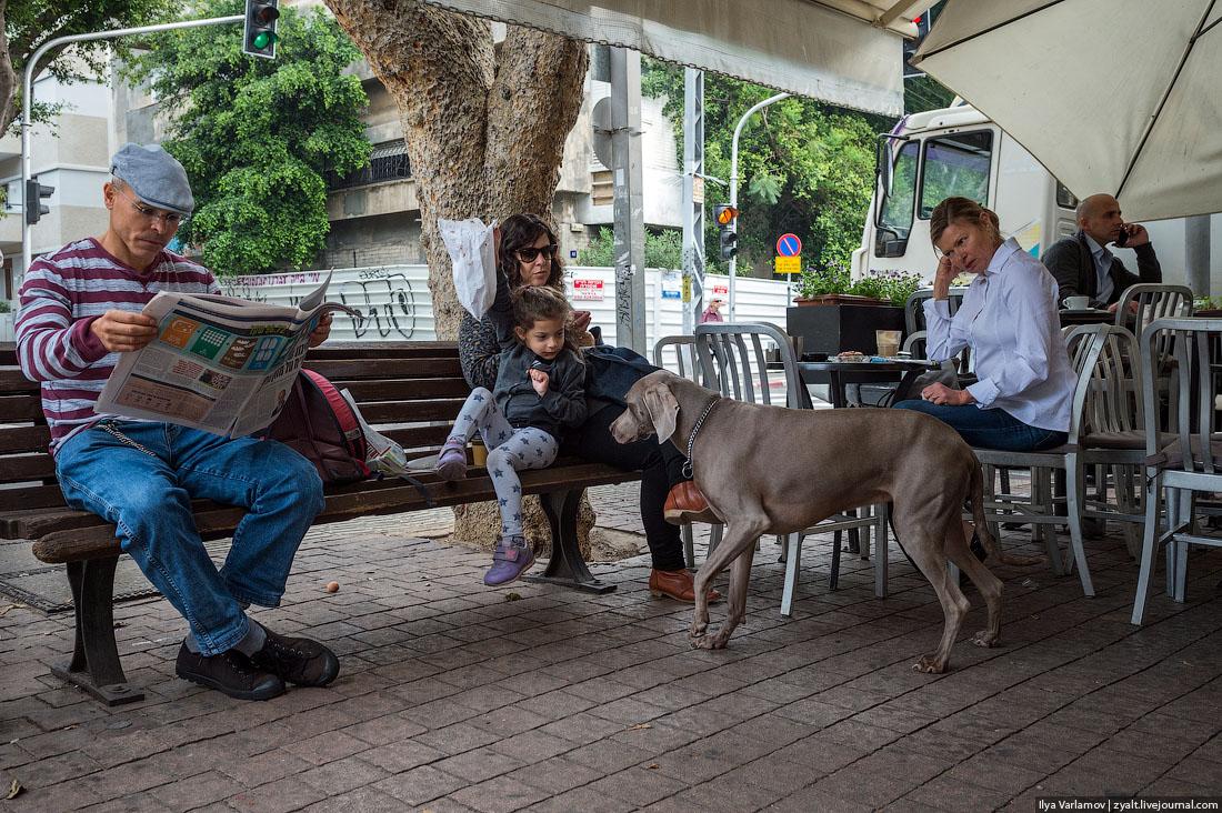Как Израиль победил коронавирус