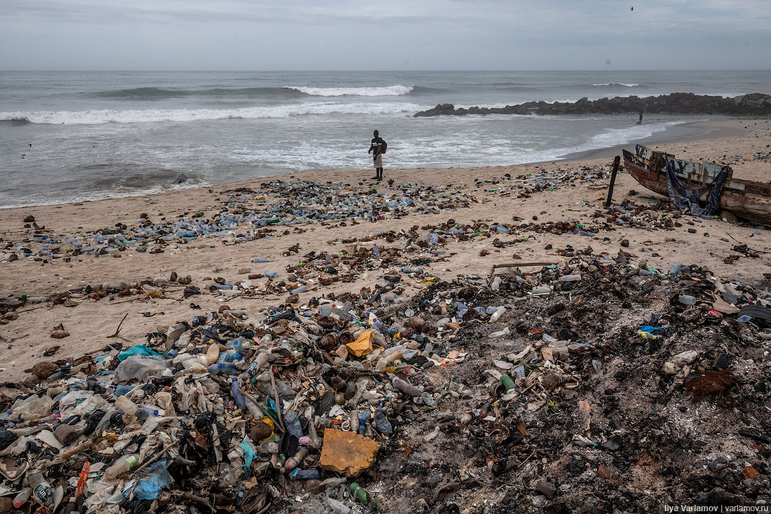 На пути к миру, в котором пластик не опаснее дерева