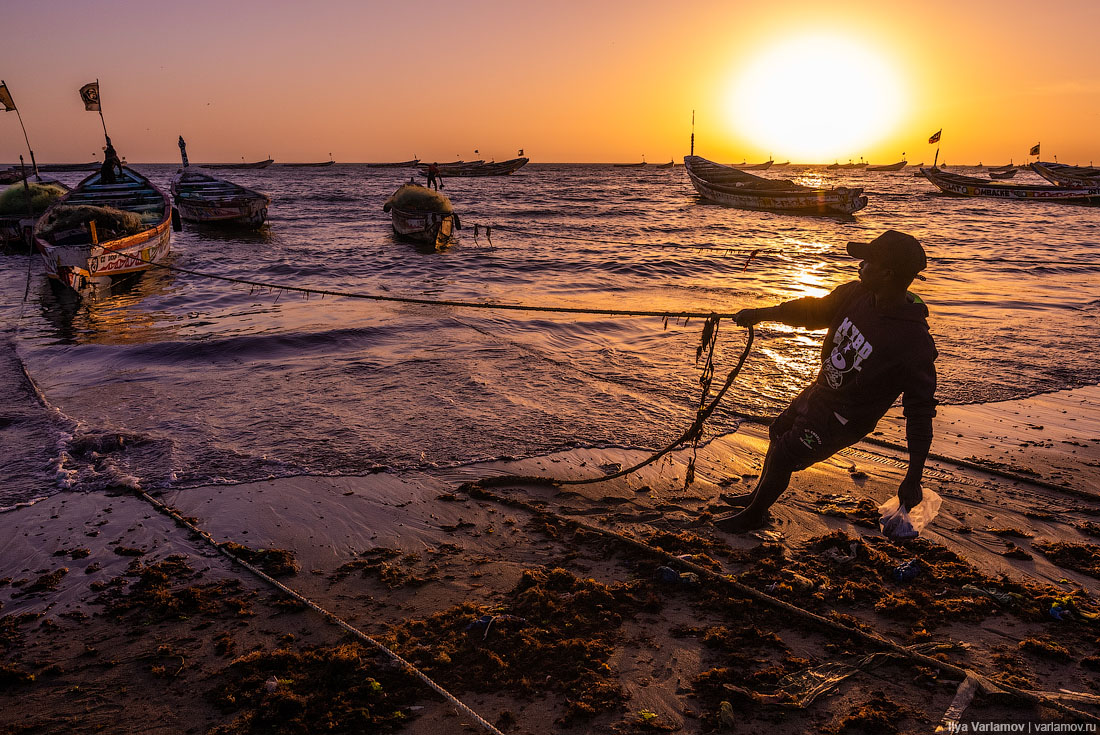 Катастрофа в Сенегале. Как выживают рыбаки без рыбы?