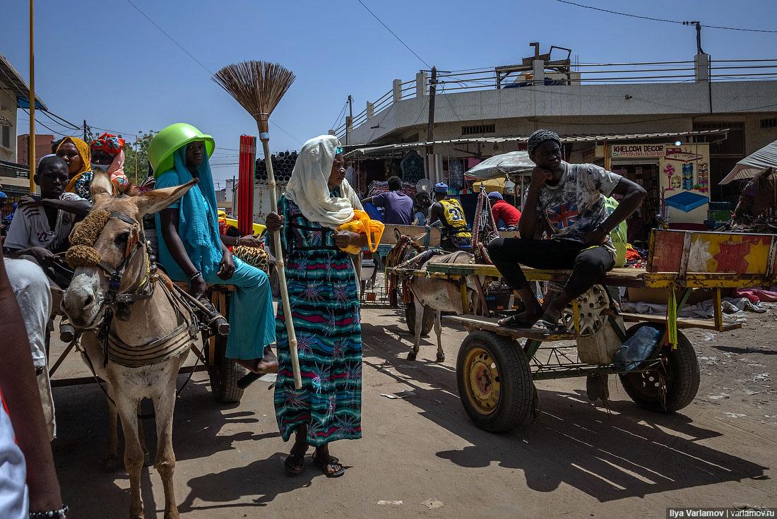 Туба: религиозный центр Сенегала, который живёт по своим законам