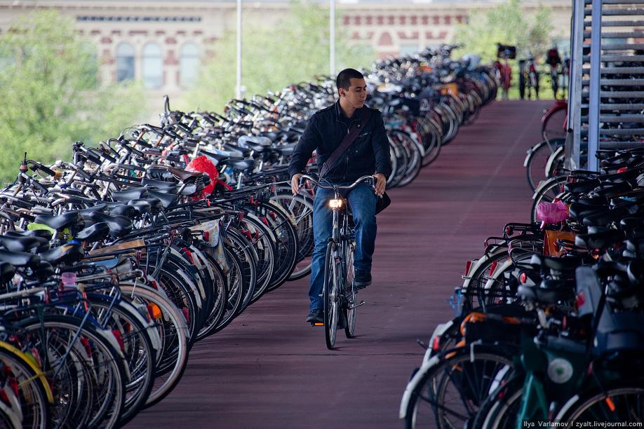 важно сколько стоит аренда байка в амстердаме день Стоимость доставки: