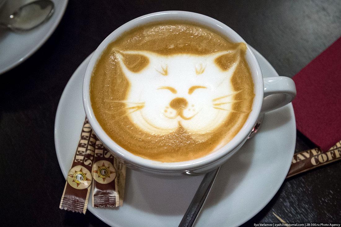 доброе утро с кофе и котиком картинки получив большую