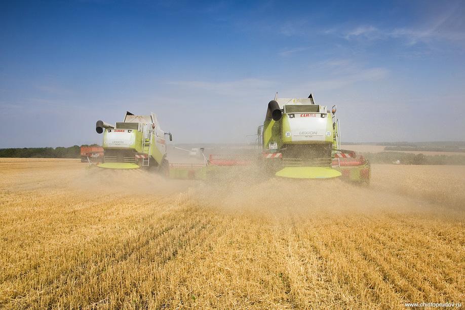 В Карачаево-Черкесии зерновые обмолочены на 42% площадей